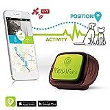 Rastreador GPS de mascotas para perros y gatos de...